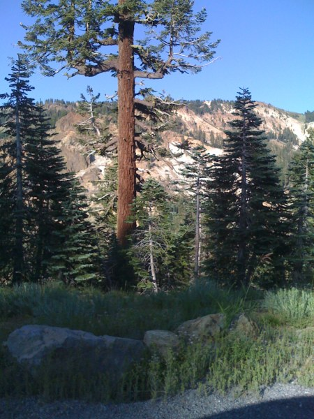 Lassen Park viewpoint from road