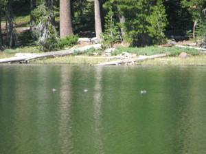 Little Bear Lake in the Summit Lakes region