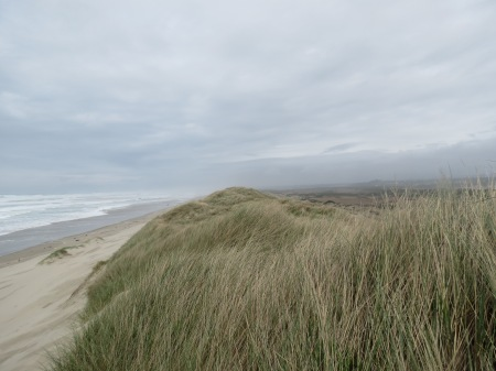 View at top of dunes, 50 ft (15 m) above ocean.