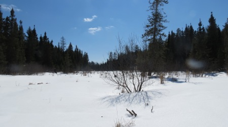 Spring Creek, Boundary Waters Canoe Area, late April 2013.  I camped within 50 yards of the right side of the photograph.