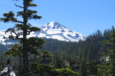 First view of South Sister from lava field.