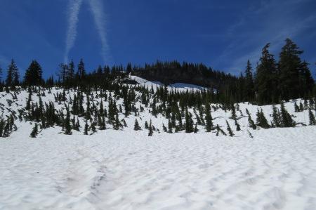 Open snow field