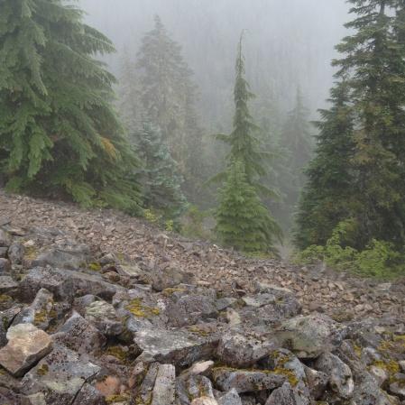 Rockpile in fog