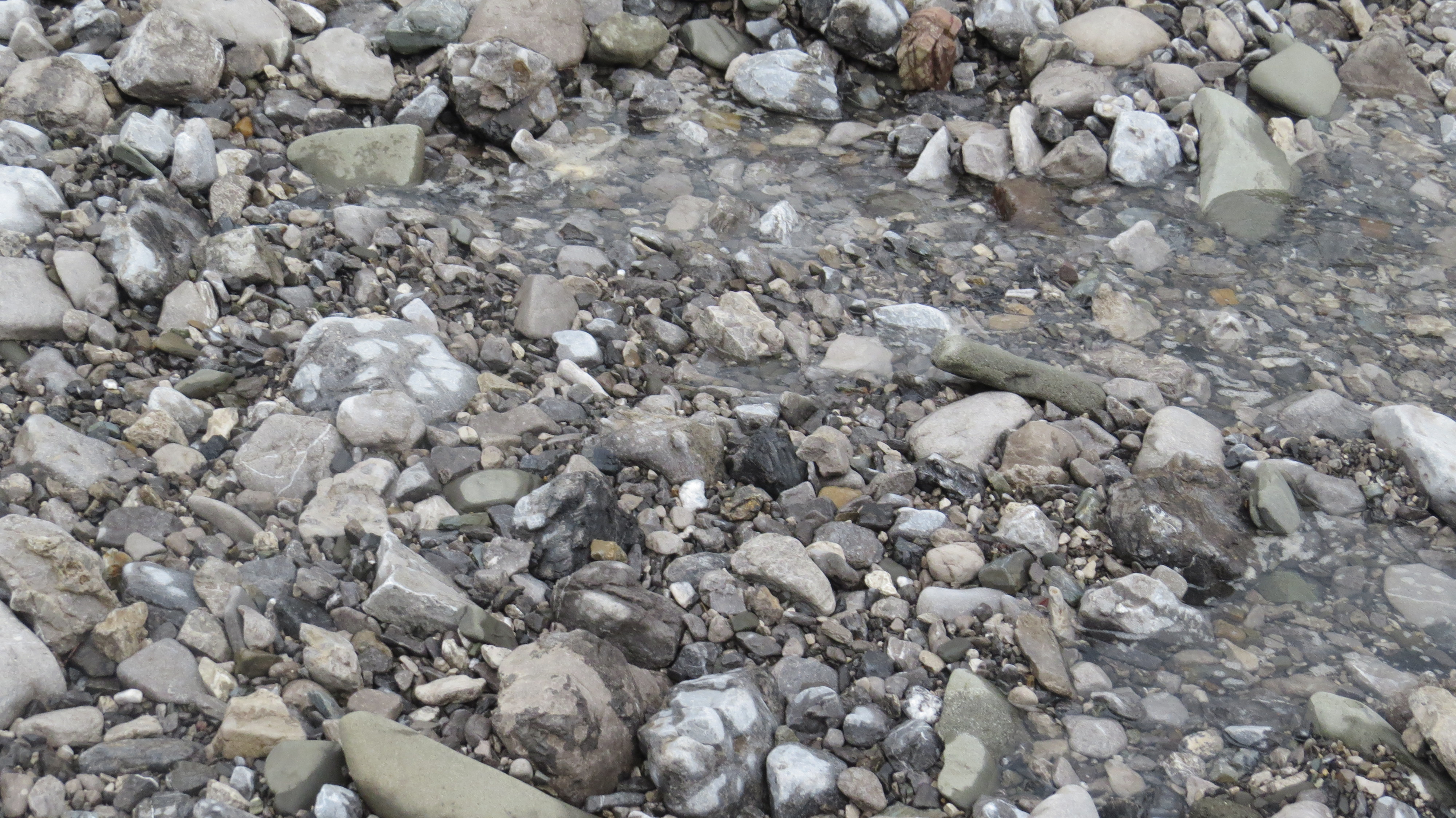 Water slowly moving down a stream bed.
