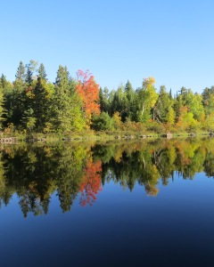Fall color, calm water of Newton Lake.