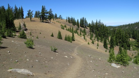 Pacific Crest Trail north of Opie Dilldock pass, looking north.
