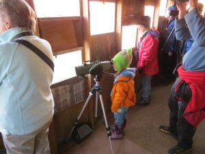 Young viewer of the Sandhill Crane migration, Kearney, Nebraska, 2012. Two great sights: the migration, and seeing a young person enthralled with nature.