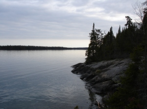 The Big Lake, Superior, from Isle Royale. May 2006: 9 Moose, 1 wolf, 1 fox.