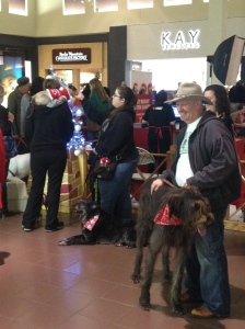 Yes, that is a Siamese on her shoulder. Valley River Mall, 2014